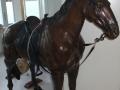 paard standbeeld